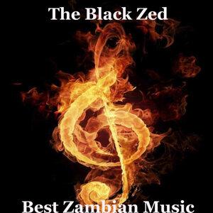 The Black Zed 歌手頭像