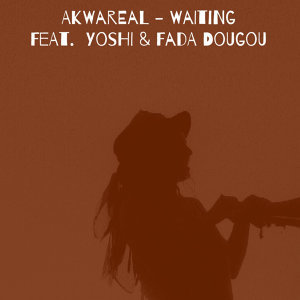 Akwareal, Yoshi & Fada Dougou 歌手頭像