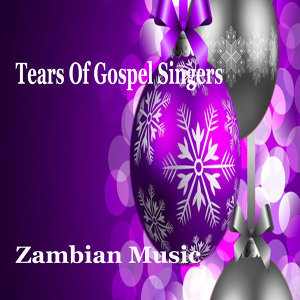 Tears of Gospel Singers 歌手頭像