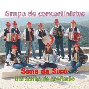 Grupo de Concertinistas Sons da Sicó 歌手頭像