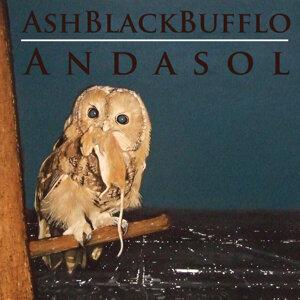 Ash Black Bufflo 歌手頭像
