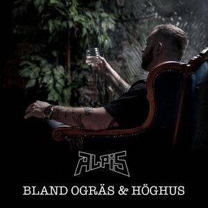 Alpis 歌手頭像