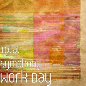 Total Symphony 歌手頭像
