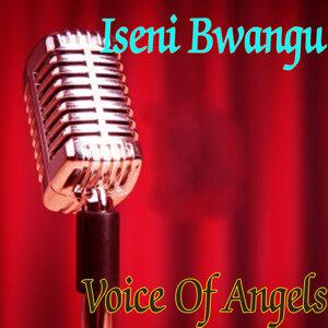 Voice Of Angels 歌手頭像