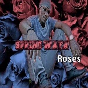 Spring Wata 歌手頭像