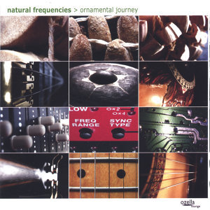 Natural Frequencies aka Andreas Leifeld 歌手頭像