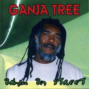 Ganja Tree 歌手頭像