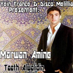 Marwan Amine 歌手頭像
