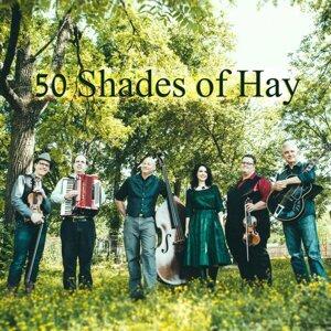 50 Shades of Hay 歌手頭像