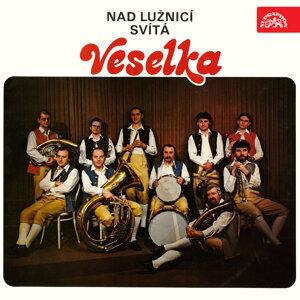 Veselka 歌手頭像