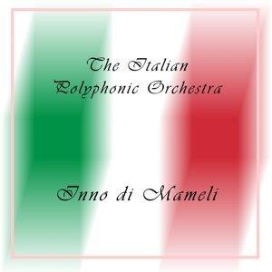 The Italian Polyphonic Orchestra, Pietro Fanchioli 歌手頭像
