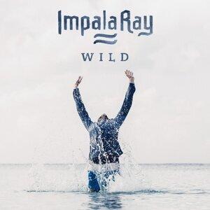 Impala Ray 歌手頭像