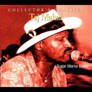 Taj Mahal (泰基馬哈) 歌手頭像