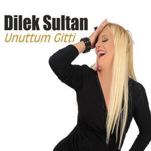Dilek Sultan 歌手頭像