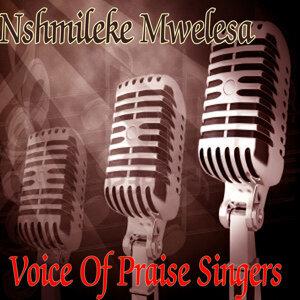Voice Of Praise Singers 歌手頭像