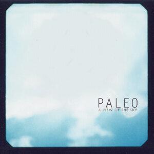 Paleo 歌手頭像