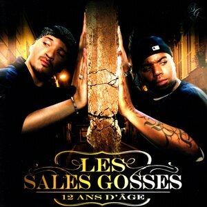 Les Sales Gosses 歌手頭像