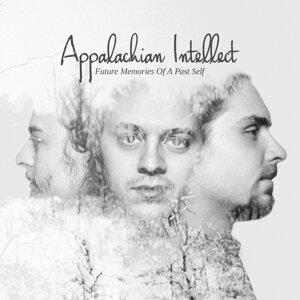 Appalachian Intellect 歌手頭像