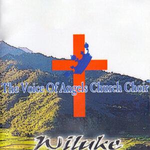 The Voice Of Angels Church Choir 歌手頭像