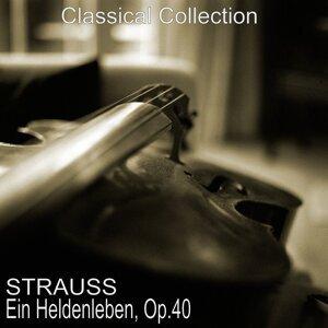 Berliner Philharmoniker, Herbert von Karajan, Michel Schwalbé 歌手頭像