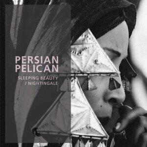 Persian Pelican 歌手頭像