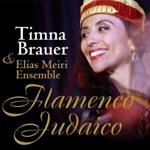 Timna Brauer & Elias Meiri Ensemble