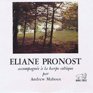 Eliane Pronost, Andrew Mahoux Artist photo