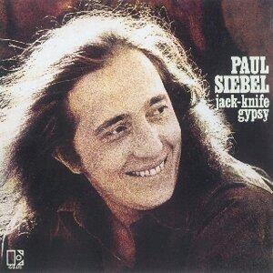 Paul Siebel 歌手頭像
