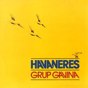 Grup Gavina 歌手頭像