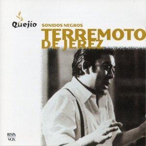 Terremoto de Jerez 歌手頭像