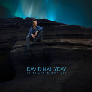 David Hallyday 歌手頭像