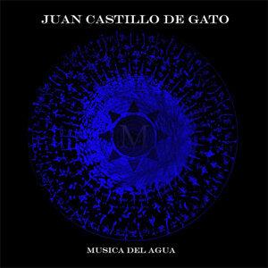 Juan Castillo de Gato 歌手頭像