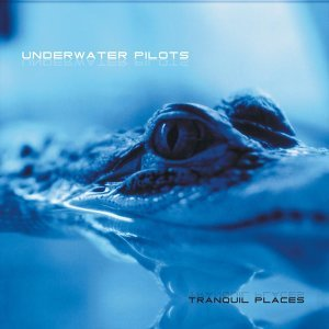 Underwater Pilots