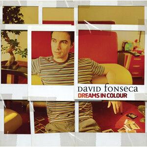 David Fonseca 歌手頭像