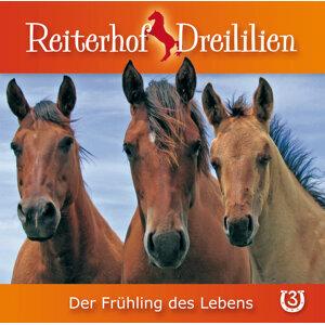 Reiterhof Dreililien 歌手頭像