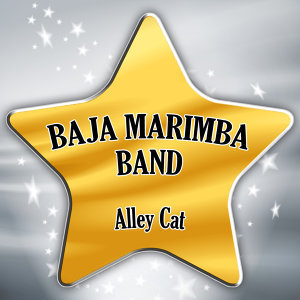 The Baja Marimba Band
