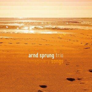Arnd Sprung Trio 歌手頭像
