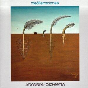 Afrodisian Orchestra
