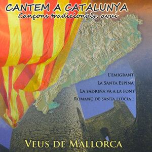 Veus De Mallorca 歌手頭像