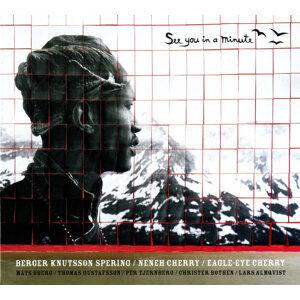 Bengt Berger 歌手頭像