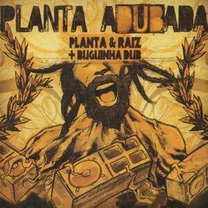 Planta E Raiz 歌手頭像