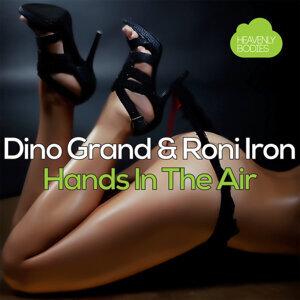 Dino Grand, Roni Iron 歌手頭像