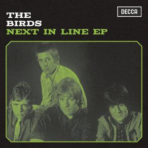 The Birds 歌手頭像
