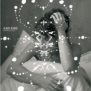 Kaki King 歌手頭像