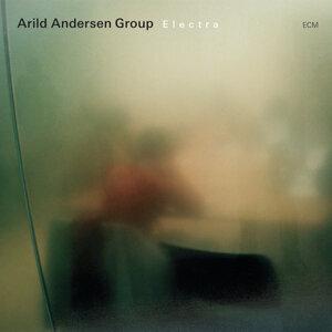 Arild Andersen Group