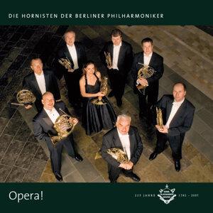 Die Hornisten der Berliner Philharmoniker 歌手頭像
