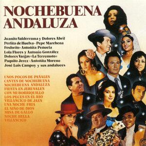 Nochebuena Andaluza 歌手頭像