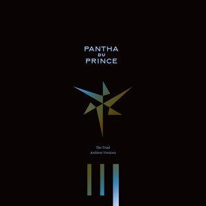 Pantha Du Prince (潘塔王子) 歌手頭像