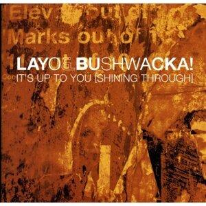 Layo & Bushwacka 歌手頭像