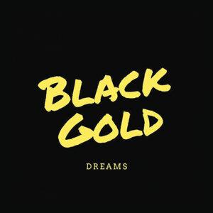 Black Gold 歌手頭像